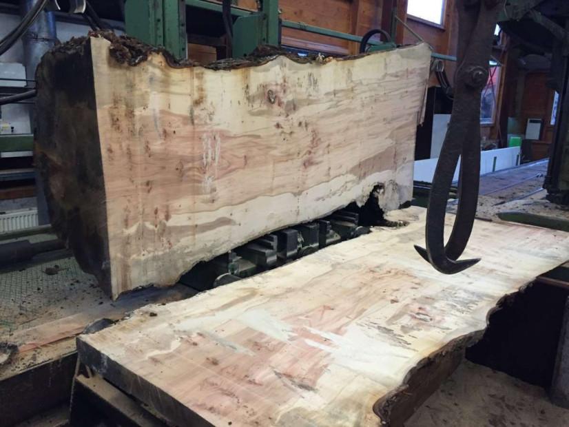 suikeresdoorn-boomstamtafels-houtzagerij