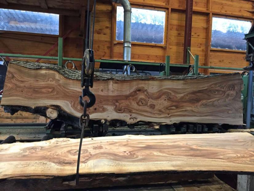 zagerij-iepenhout-houtzagerij-woodend